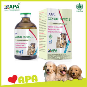 (English) APA LINCO SPEC I