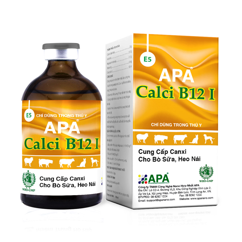 APA Calci B12 I