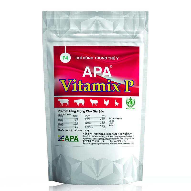 APA Vitamix P